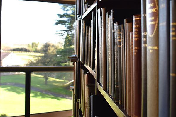 New windows in the Monastery library