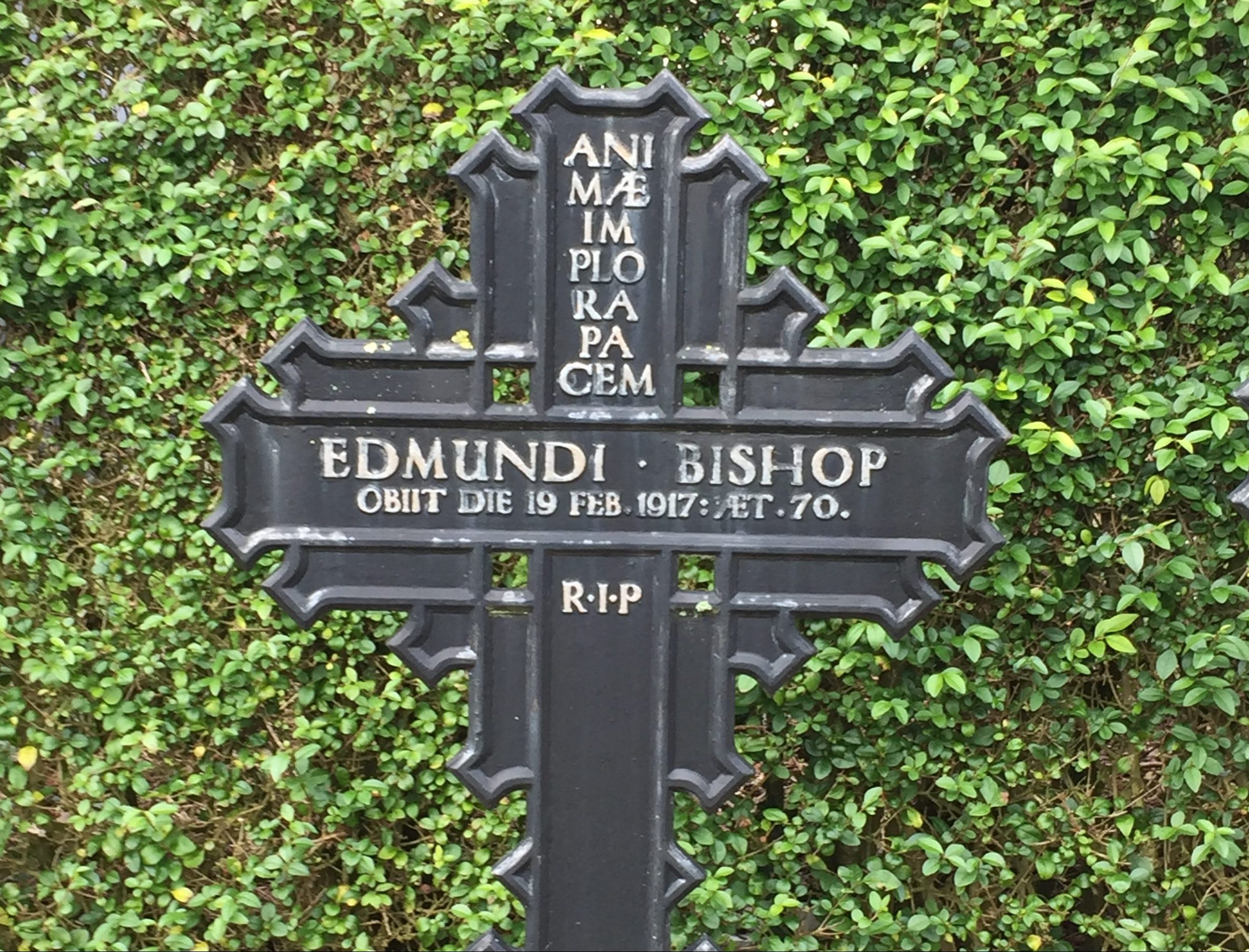 Edmund Bishop Sign